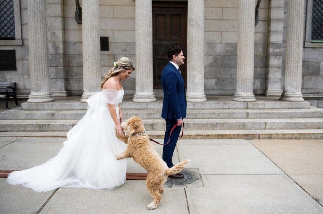 Cute-wedding-first-look-photography-Massachusetts-wedding-dog-first-look-irynas-photography-boston-wedding-photographer